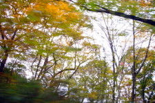 200711_303