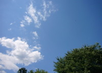 2007616_002