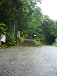 2007_208_1