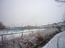 20081_035m