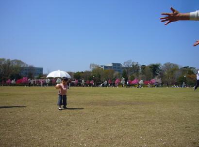 20084_035
