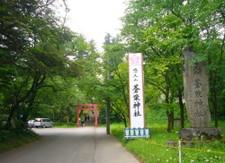 20085_296