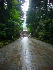 20085_475