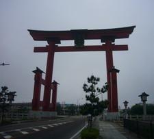 20085_614